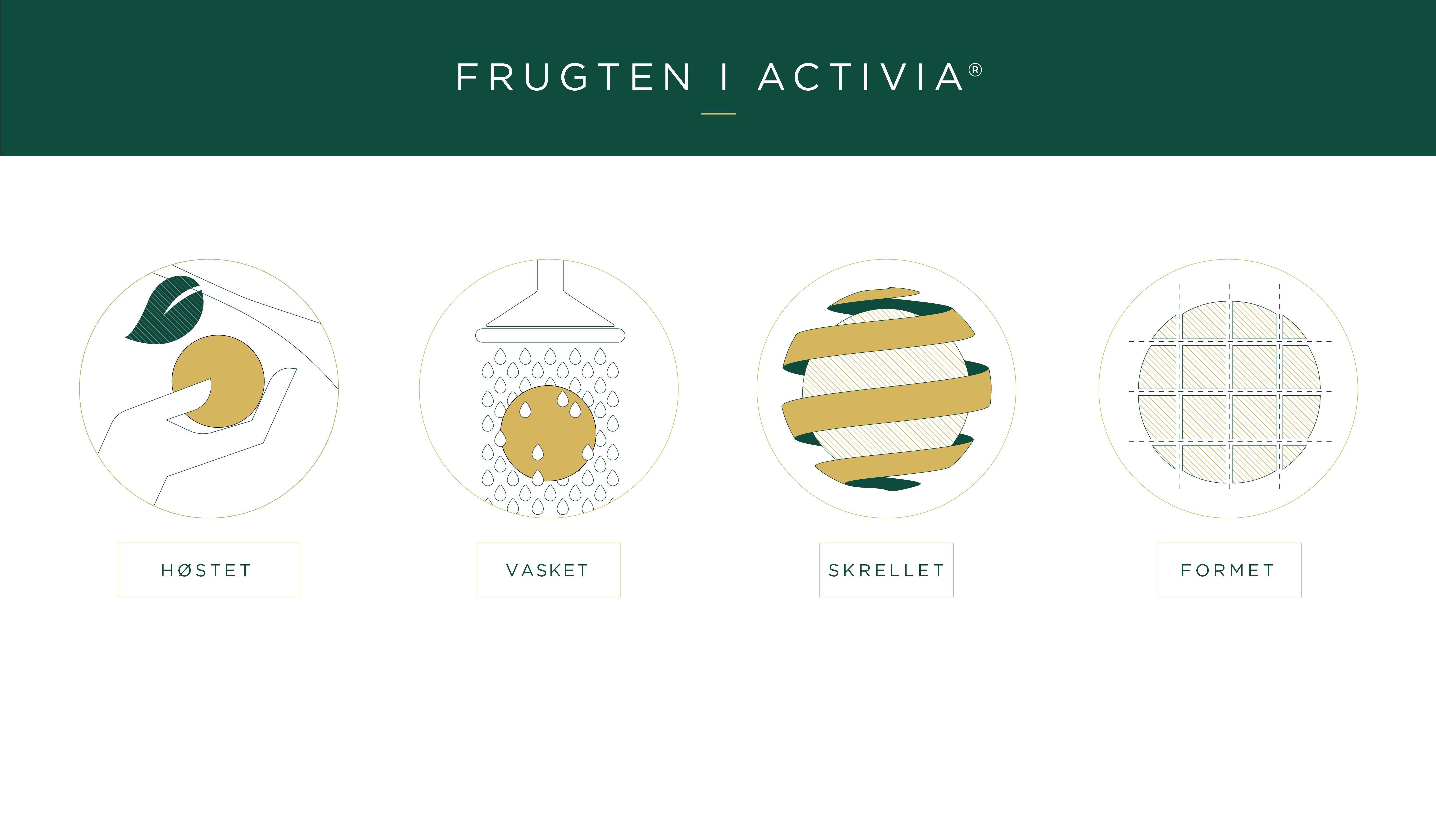 fruit_in_Activia_DK
